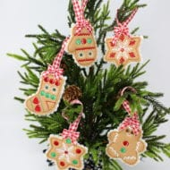 Mini Cookie Ornaments (4x4)