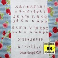 Intro Script Redwork
